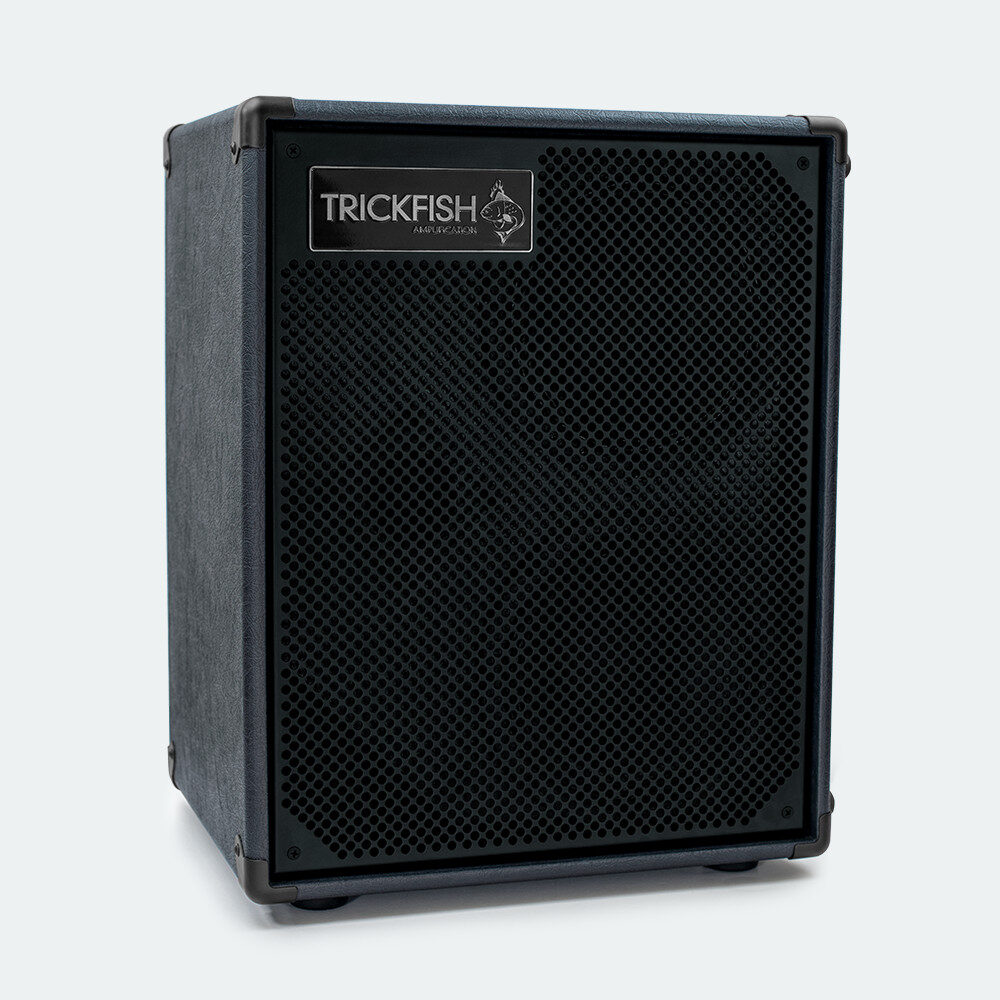 "2 x 8"" compact bass speaker cabinet"